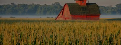 farm and crop insurance in Canadian or Amarillo STATE   Texas Preferred Insurance